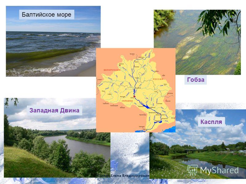 Западная Двина Каспля Гобза Коляда Елена Владимирован Балтийское море