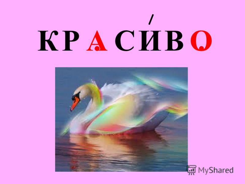 КР. СИВ.АО