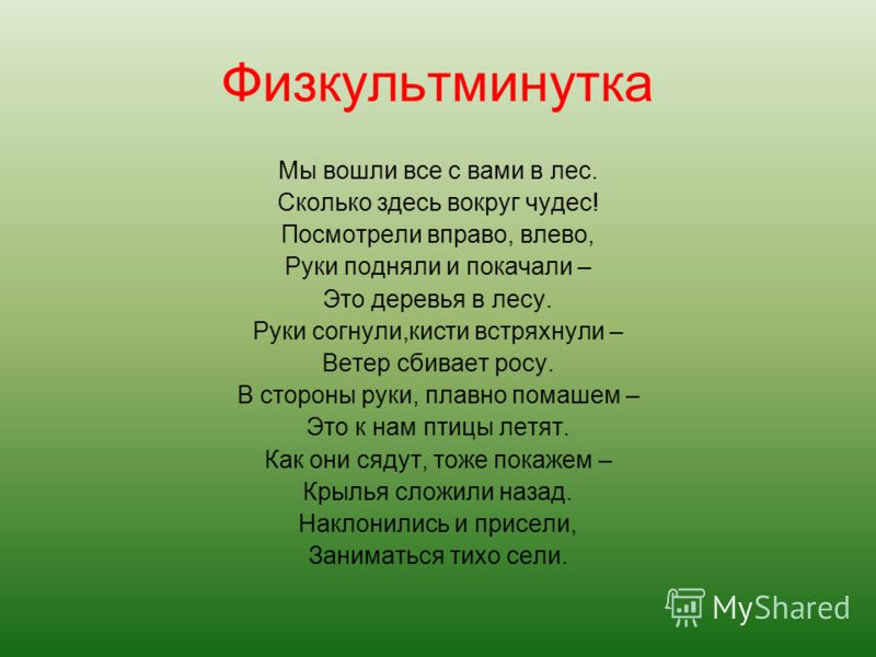 рыжая БЕЛОЧКА,