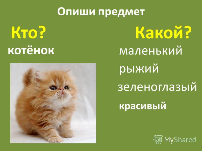 Опиши предмет Кто? Какой? котёнок маленький рыжий зеленоглазый красивый