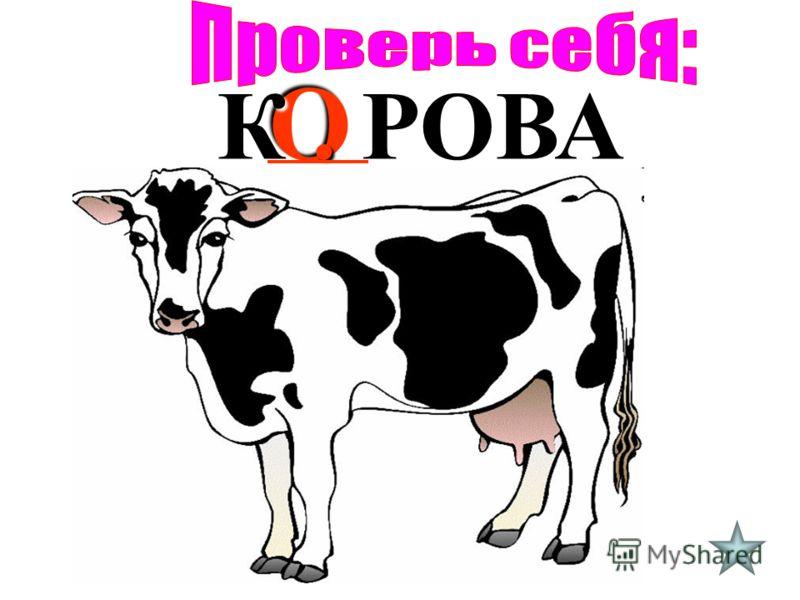 О К. РОВА