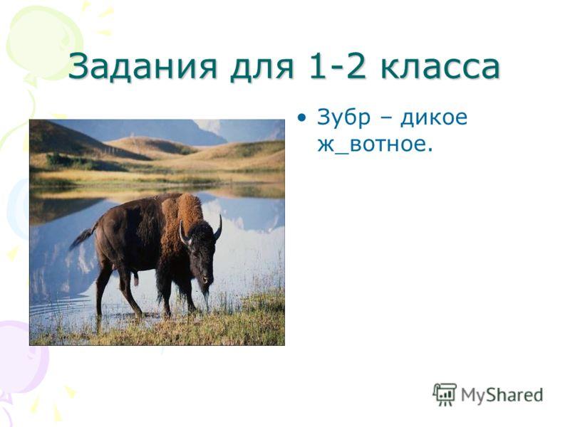 Задания для 1-2 класса Зубр – дикое ж_вотное.