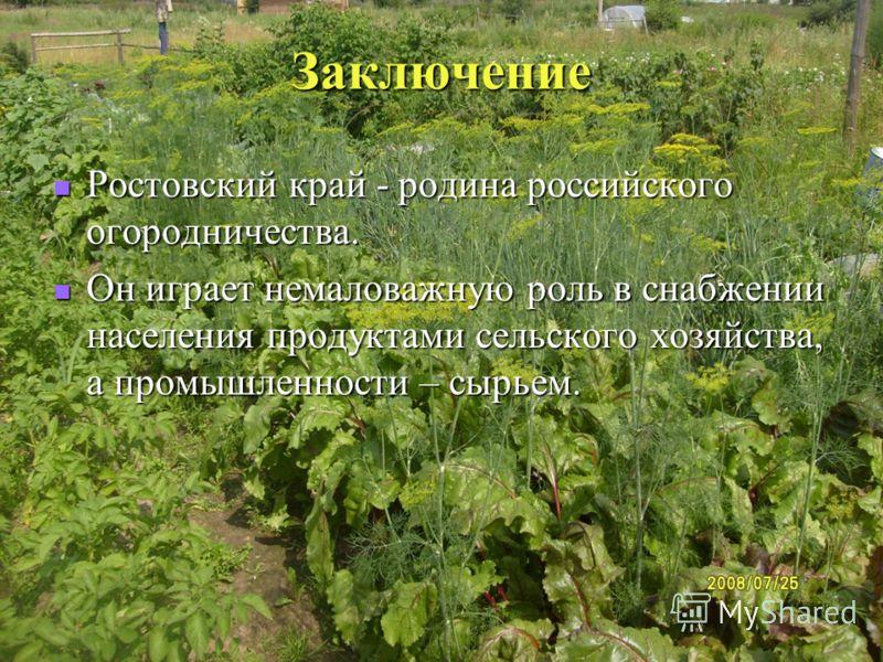 Заключение Ростовский край - родина российского огородничества. Ростовский край - родина российского огородничества. Он играет немаловажную роль в снабжении населения продуктами сельского хозяйства, а промышленности – сырьем. Он играет немаловажную р