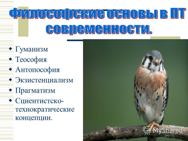 Гуманизм Теософия Антопософия Экзистенциализм Прагматизм Сциентистско- технократические концепции.
