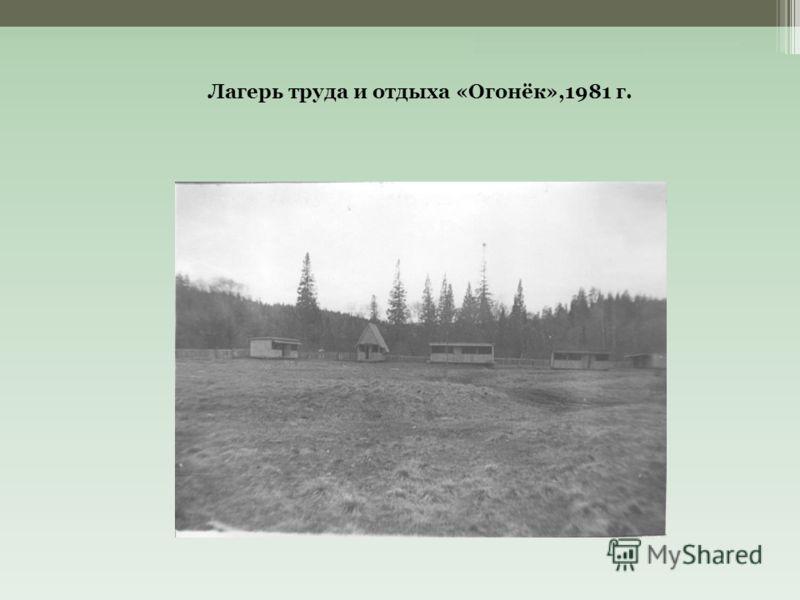 Лагерь труда и отдыха «Огонёк»,1981 г.