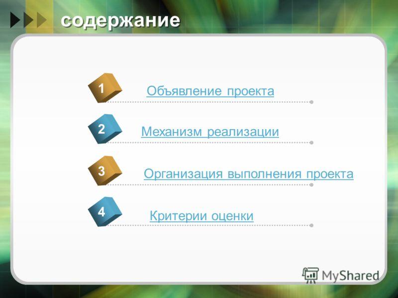 содержание Объявление проекта 1 Механизм реализации 2 Организация выполнения проекта 3 Критерии оценки 4