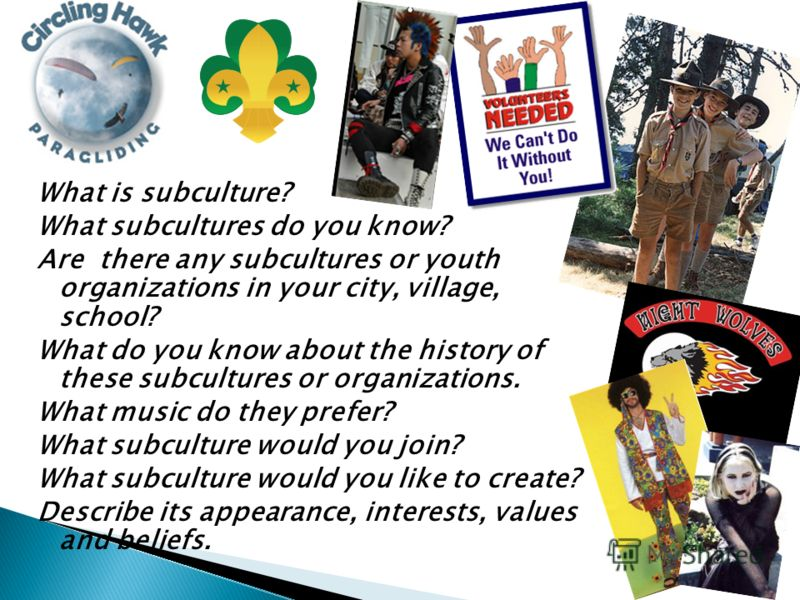 What is subculture? What subcultures do you know? Are there any subcultures or youth organizations in your city, village, school? What do you know about the history of these subcultures or organizations. What music do they prefer? What subculture wou