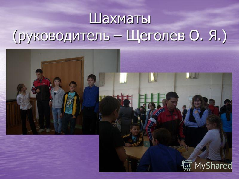 Шахматы (руководитель – Щеголев О. Я.)