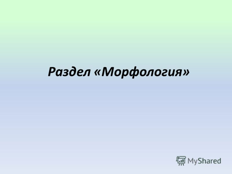 Раздел «Морфология»