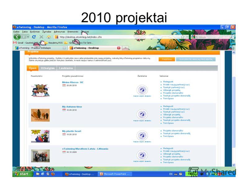 2010 projektai