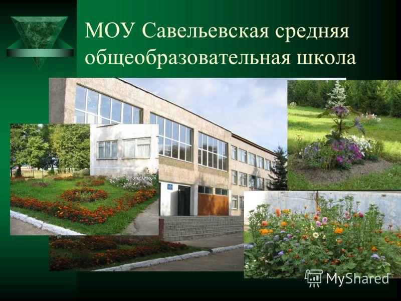 МОУ Савельевская средняя общеобразовательная школа