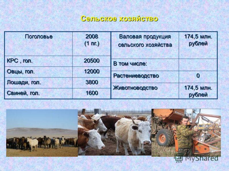 Основные показатели социально- экономического развития за I полугодие 2008 года объем продукции промышленности _____ 86 млн. руб. объем продукции промышленности _____ 86 млн. руб. заготовлено древесины _____________________ 50 тыс. м³ заготовлено дре
