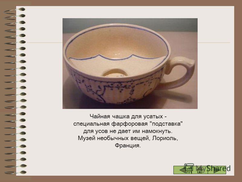 Чайная чашка для усатых - специальная фарфоровая подставка для усов не дает им намокнуть. Музей необычных вещей, Лориоль, Франция.