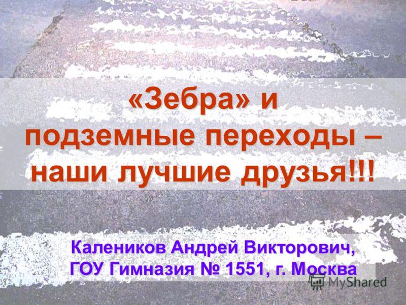 «Зебра» и подземные переходы – наши лучшие друзья!!! Калеников Андрей Викторович, ГОУ Гимназия 1551, г. Москва