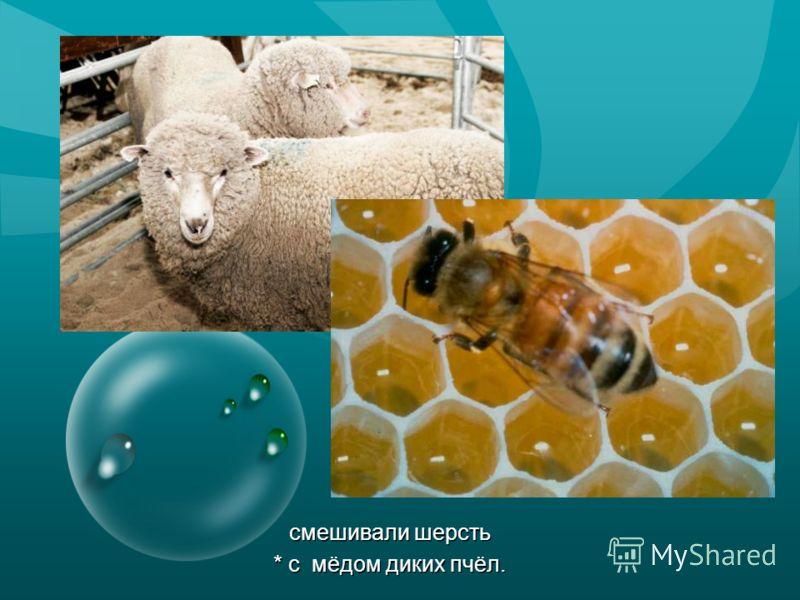 смешивали шерсть * с мёдом диких пчёл. смешивали шерсть * с мёдом диких пчёл.
