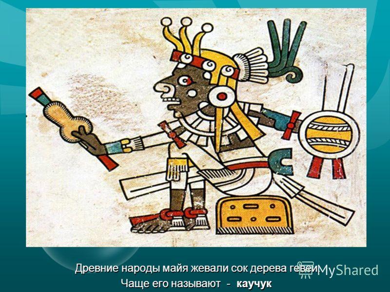 Древние народы майя жевали сок дерева гевеи. Чаще его называют - каучук Древние народы майя жевали сок дерева гевеи. Чаще его называют - каучук