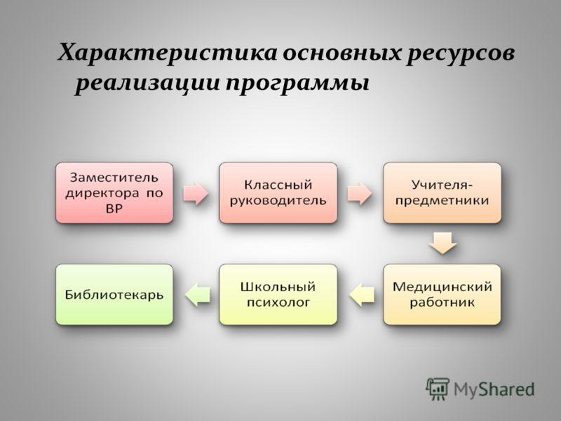 Характеристика основных ресурсов реализации программы