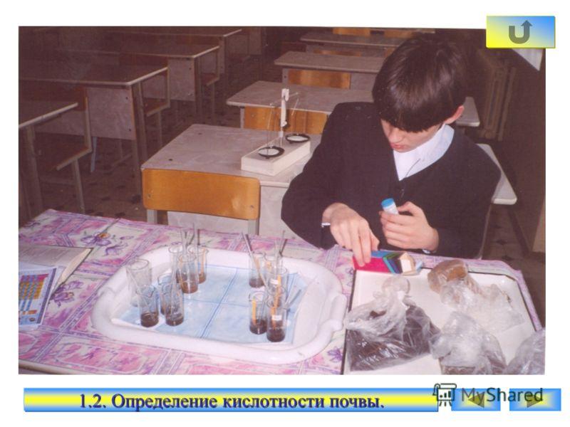 1.1. Определение кислотности почвы.