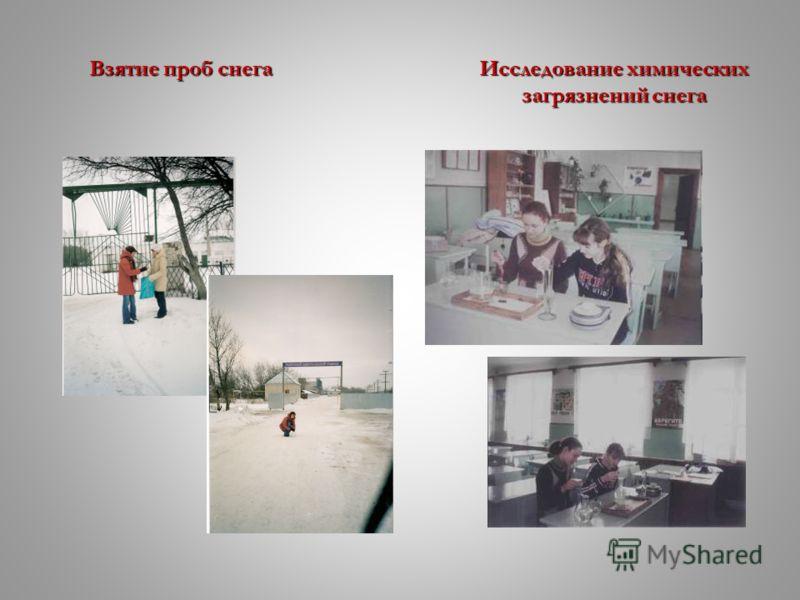 Взятие проб снегаИсследованиехимических Взятие проб снега Исследование химических загрязнений снега загрязнений снега