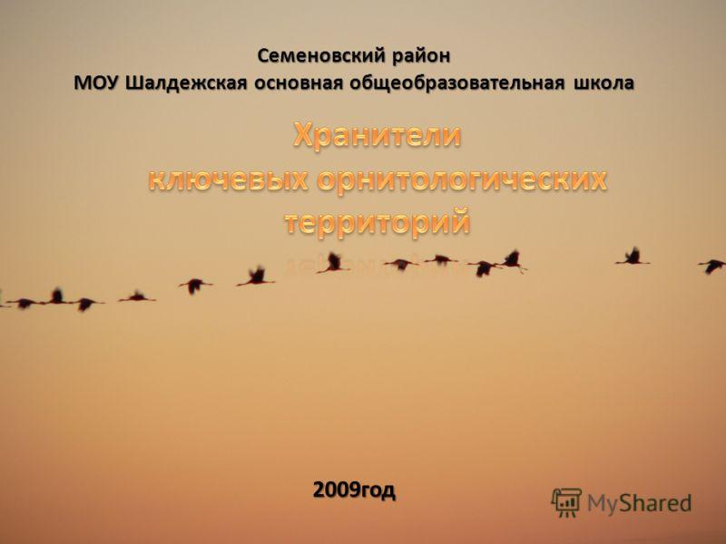Семеновский район МОУ Шалдежская основная общеобразовательная школа 2009год