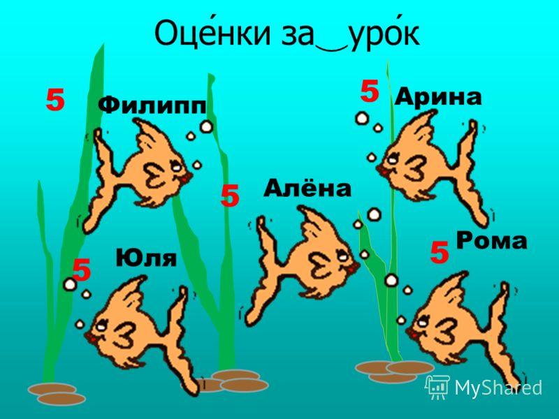 - Какая тема урока? - Тема урока «Рыбы». - О ком мы го ̅ во ̅ рили? - Мы го ̅ во ̅ рили о ̅ рыбах. - О каких видах рыб мы го ̅ во ̅ рили? - Мы го ̅ во ̅ рили о ̅ мо ̅ рских, аквариумных и речных рыбах.