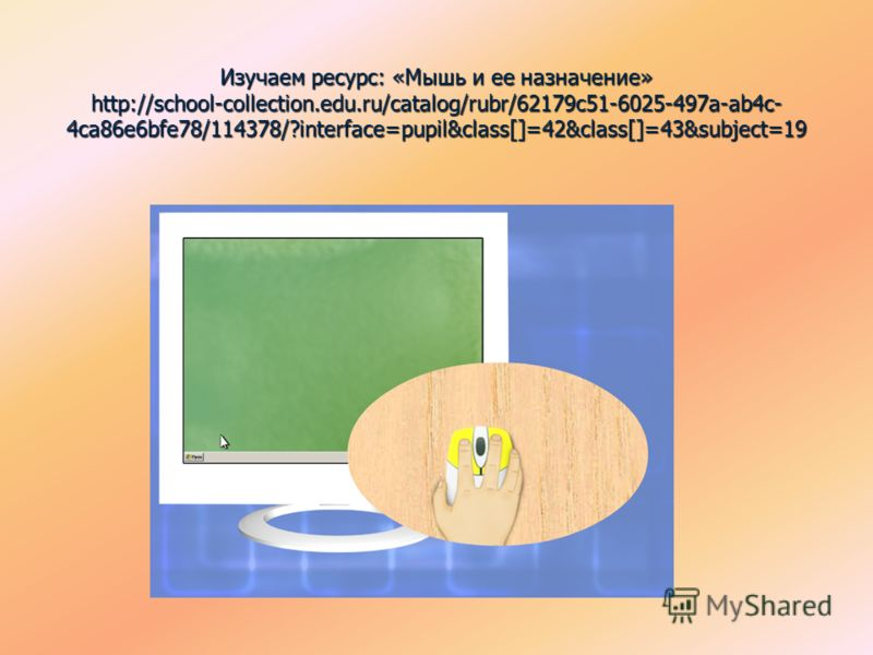 Изучаем ресурс: «Мышь и ее назначение» http://school-collection.edu.ru/catalog/rubr/62179c51-6025-497a-ab4c- 4ca86e6bfe78/114378/?interface=pupil&class[]=42&class[]=43&subject=19