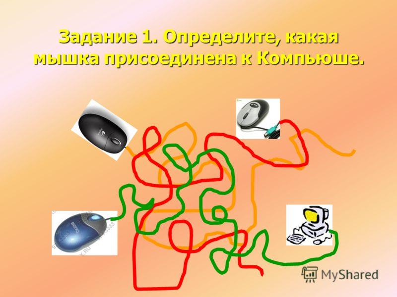 Задание 1. Определите, какая мышка присоединена к Компьюше.