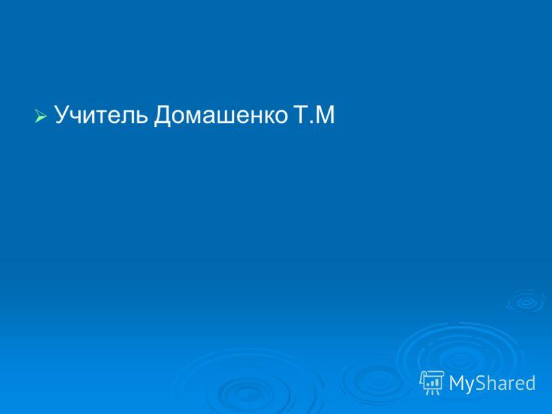 Учитель Домашенко Т.М