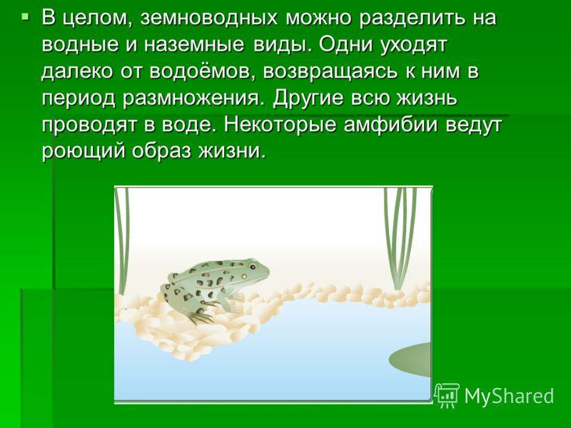 В целом, земноводных можно разделить на водные и наземные виды. Одни уходят далеко от водоёмов, возвращаясь к ним в период размножения. Другие всю жизнь проводят в воде. Некоторые амфибии ведут роющий образ жизни. В целом, земноводных можно разделить