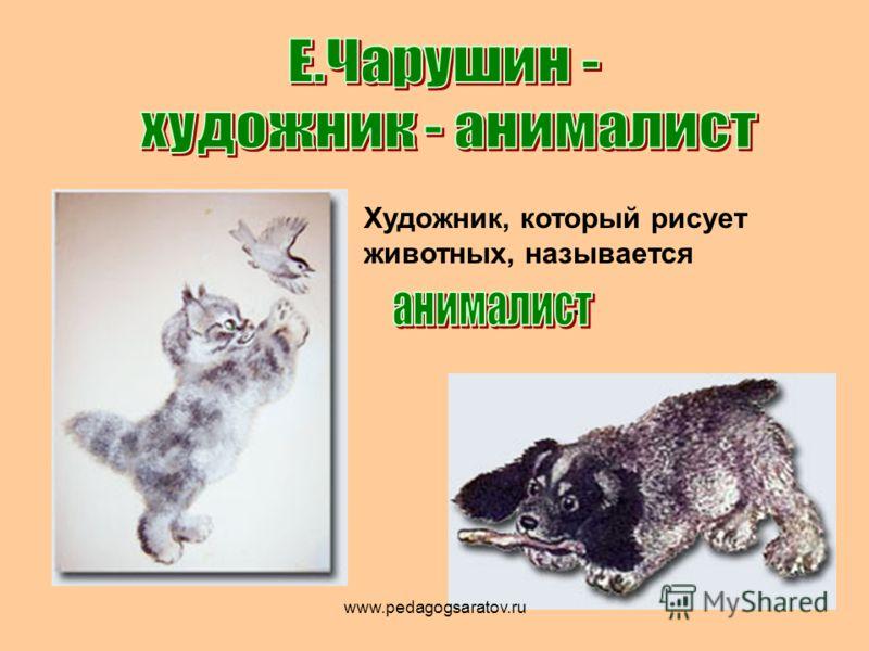 Художник, который рисует животных, называется. www.pedagogsaratov.ru