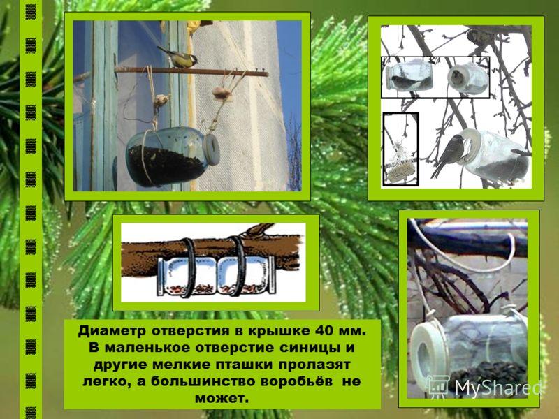 Диаметр отверстия в крышке 40 мм. В маленькое отверстие синицы и другие мелкие пташки пролазят легко, а большинство воробьёв не может.