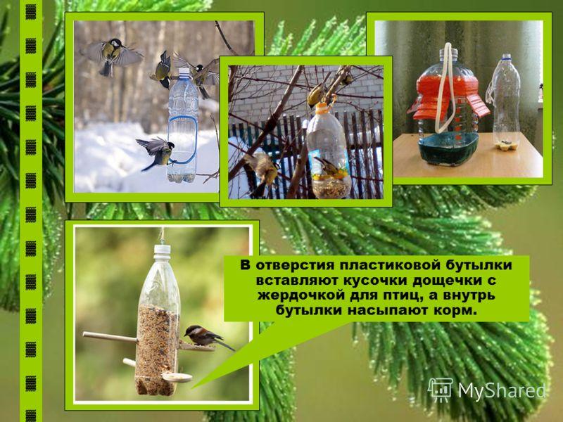 В отверстия пластиковой бутылки вставляют кусочки дощечки с жердочкой для птиц, а внутрь бутылки насыпают корм.