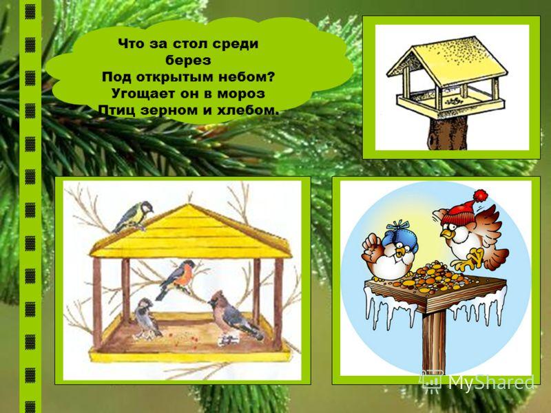 Что за стол среди берез Под открытым небом? Угощает он в мороз Птиц зерном и хлебом.