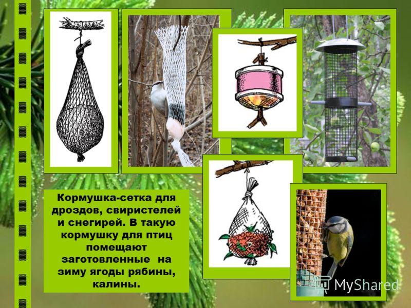 Кормушка-сетка для дроздов, свиристелей и снегирей. В такую кормушку для птиц помещают заготовленные на зиму ягоды рябины, калины.
