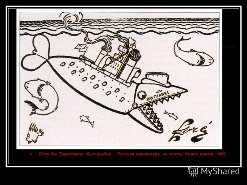 Если бы Трансвааль был рыбой… Русская карикатура из газеты Новое время, 1899