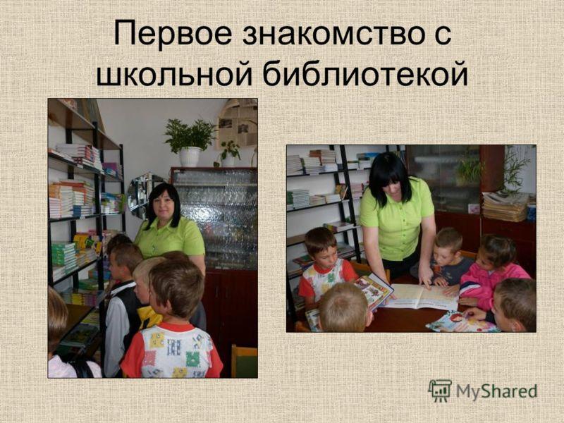 Первое знакомство с школьной библиотекой