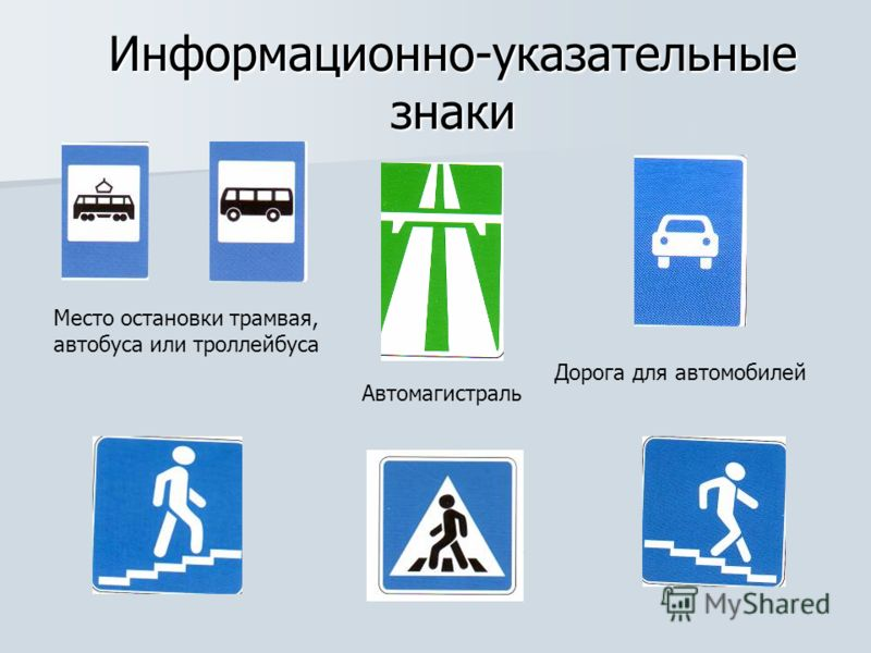 Информационно-указательные знаки Дорога для автомобилей Место остановки трамвая, автобуса или троллейбуса Автомагистраль