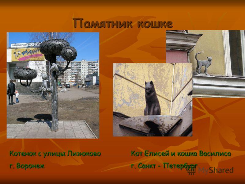 Памятник кошке Котенок с улицы Лизюково г. Воронеж Кот Елисей и кошка Василиса г. Санкт - Петербург