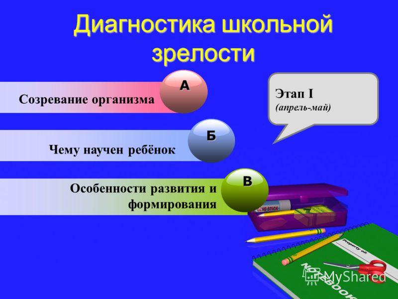 Диагностика школьной зрелости A Созревание организма Б Чему научен ребёнок В Особенности развития и формирования Этап I (апрель-май) 6