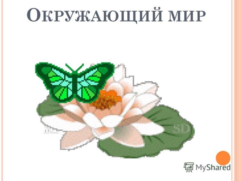 О КРУЖАЮЩИЙ МИР