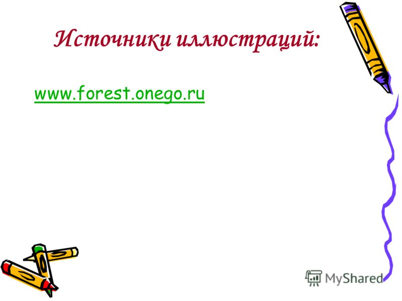 www.forest.onego.ru Источники иллюстраций: