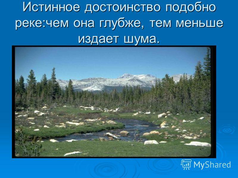 Истинное достоинство подобно реке:чем она глубже, тем меньше издает шума.