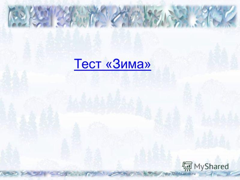 Тест «Зима»