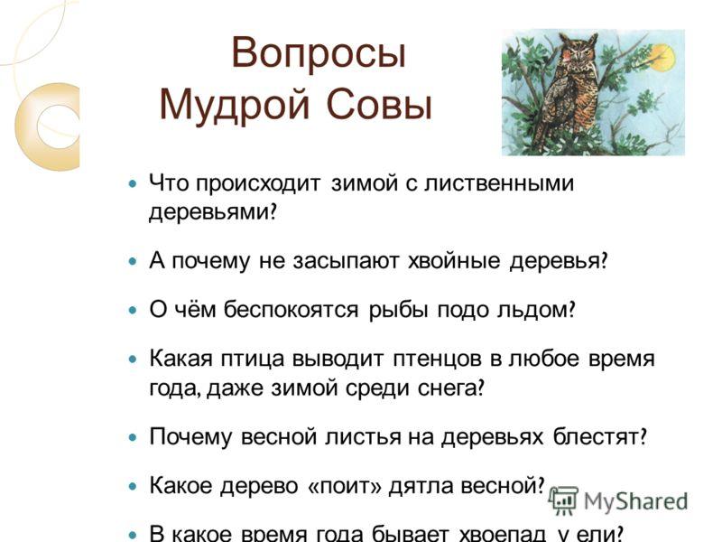 Вопросы Мудрой Совы Что происходит зимой с лиственными деревьями ? А почему не засыпают хвойные деревья ? О чём беспокоятся рыбы подо льдом ? Какая птица выводит птенцов в любое время года, даже зимой среди снега ? Почему весной листья на деревьях бл