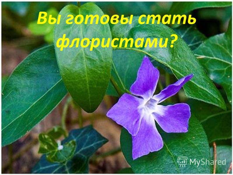 Вы готовы стать флористами?