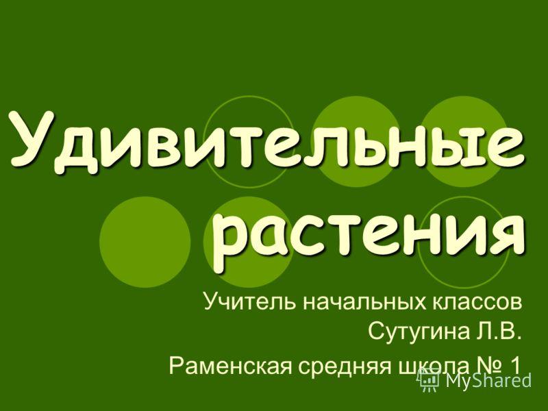 Удивительные растения Учитель начальных классов Сутугина Л.В. Раменская средняя школа 1