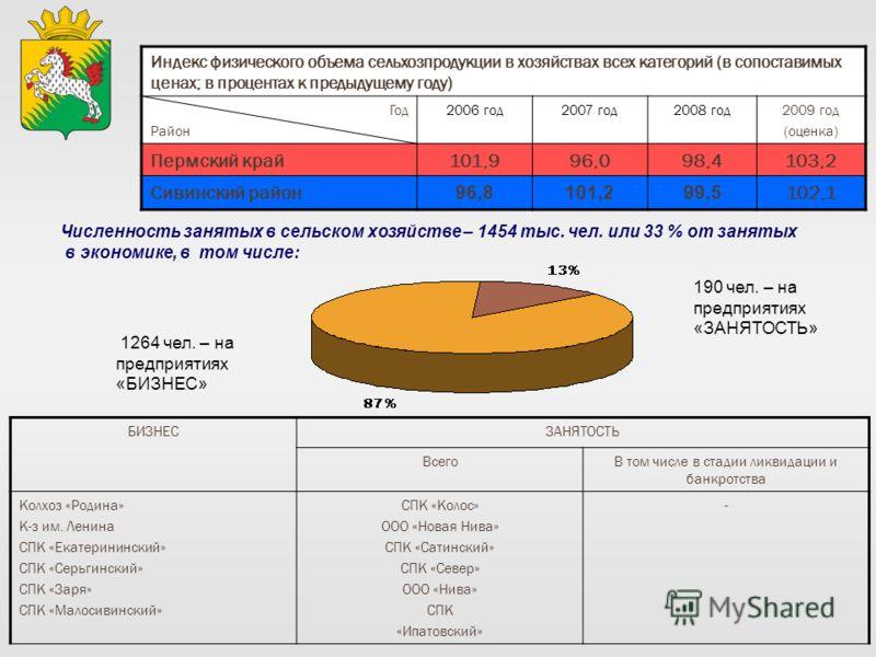 Индекс физического объема сельхозпродукции в хозяйствах всех категорий (в сопоставимых ценах; в процентах к предыдущему году) Год Район 2006 год2007 год2008 год2009 год (оценка) Пермский край101,996,098,4103,2 Сивинский район 96,8101,299,5 102,1 БИЗН