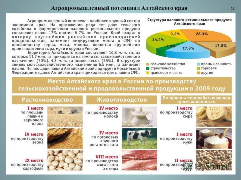 Агропромышленный потенциал Алтайского края 13
