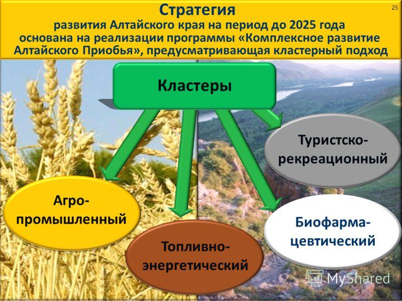 Стратегия развития Алтайского края на период до 2025 года основана на реализации программы «Комплексное развитие Алтайского Приобья», предусматривающая кластерный подход Туристско- рекреационный Агро- промышленный Биофарма- цевтический Топливно- энер