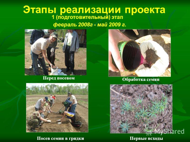 Перед посевом Обработка семян Посев семян в грядкиПервые всходы 1 (подготовительный) этап февраль 2008г - май 2009 г. Этапы реализации проекта